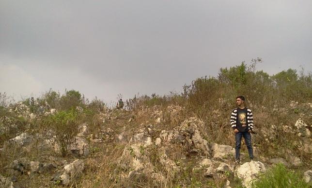 Stone Garden_002